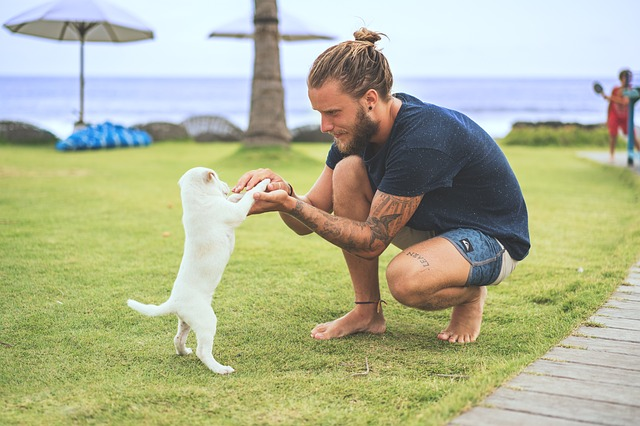 a guy playing with a puppy on the grass