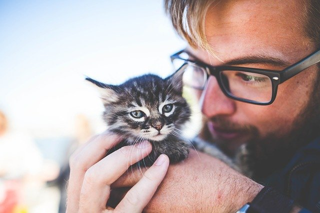 a young man with glasses holding a small kitty