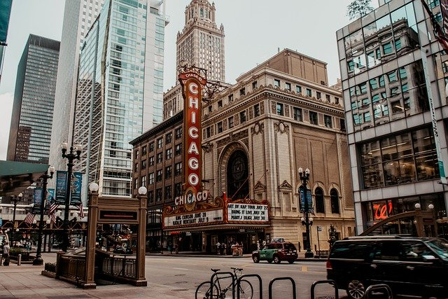 Chicago is the third-largest US city and certainly one of the most dog-friendly big cities in the country.