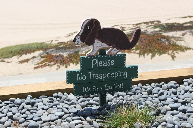 A sign for people not to let their dogs toilet on the beach.
