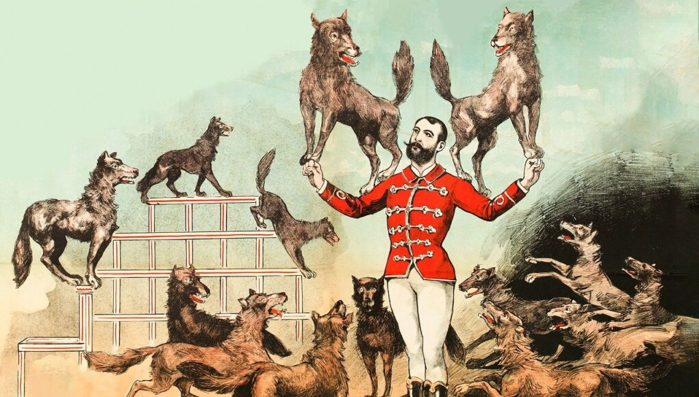 A drawing of a man holding two dogs on his shoulders, many other dogs performing tricks around him