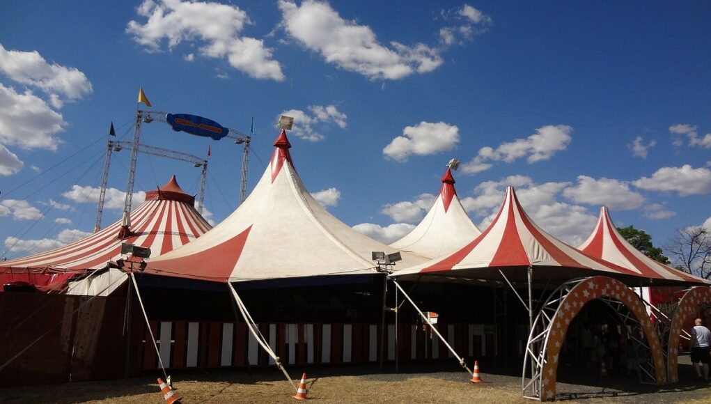 circus animals cover