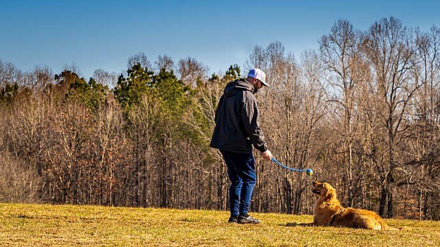 Man standing next to a dog with a dog toy