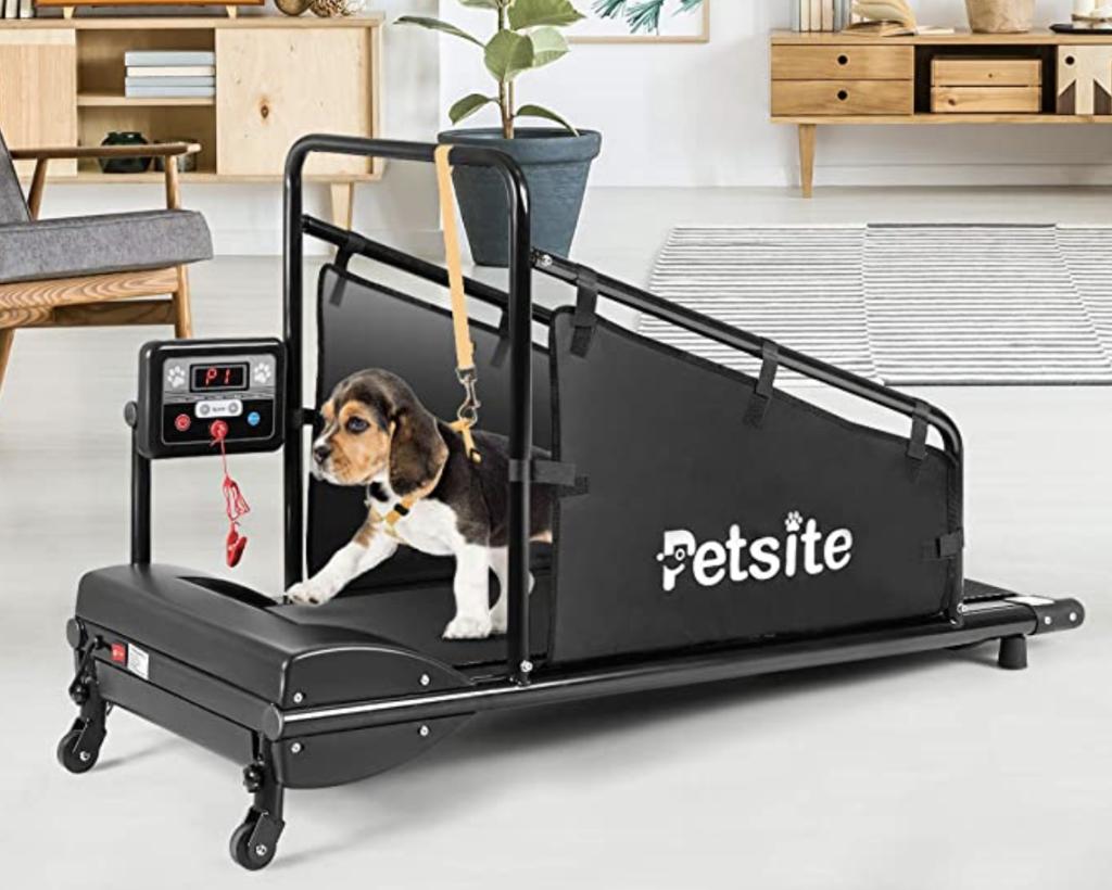 PetSite Dog Treadmill With LCD Display