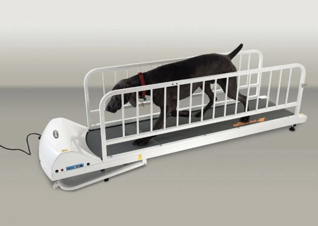 Gopet Petrun PR725 Enclosable Treadmill for Large Dogs