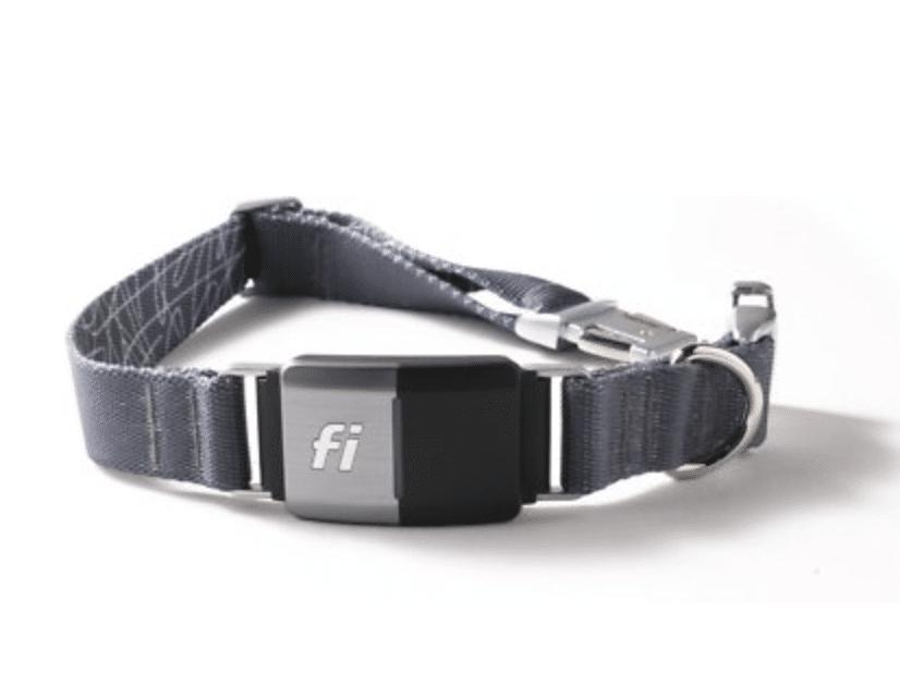 Fi Series 2 GPS Tracker Smart Dog Collar